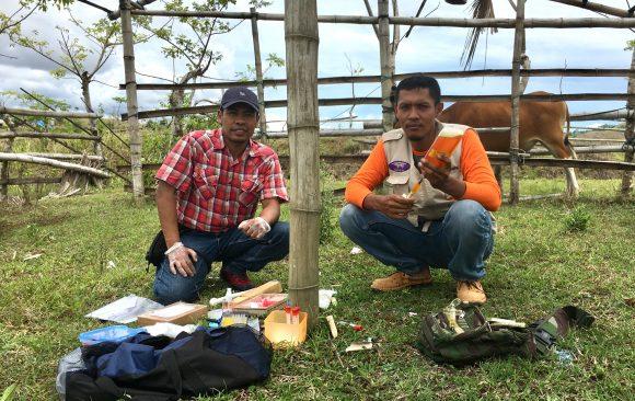 Environmental Impact Assessments Studies